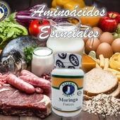 La Moringatiene propiedades y beneficios que nos ayudan a cuidarnos de forma natural. Nos aporta aminoácidos esenciales, vitaminas, minerales, antioxidantes y fibra. Nutrientes que dotan a la moringa de acción antiinflamatoria, antidiabética,cardioprotectoraohipocolestemiante #YoSoyNFN #NaturalForcesNutriproducts #MoringaForces #NFNColombia#NFNVenezuela#NFNMiami#NFNPanama