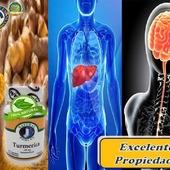 Turmerica poseepropiedadesnutricionales, antiinflamatorias, antioxidantes, antibacterianas y digestivas  #YoSoyNfn #NaturalForcesNutriproducts #Turmerica #NFNPanama 🇵🇦 #NFNMiami 🇺🇸 #NFNVenezuela 🇻🇪 #NFNColombia 🇨🇴