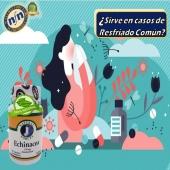 En casos de resfriado común les presentamosEchinacea💊producto 100% natural 🍃aprobado por la FDA  #YoSoyNfn #NaturalForceNutriproducts #Echinacea#salud #vida  #NFNPanama 🇵🇦 #NFNMiami 🇺🇸 #NFNVenezuela 🇻🇪 #NFNColombia 🇨🇴