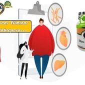 ¿Deseascontrolar tu sobrepeso?🎛️  ¿Ingieres más caloríasde las que se queman durante el ejercicio y las actividades diarias normales?🍔🍟🌮🍖  Terecomendamos: 🍃Alimentación sana🥙🍱 🍃Ejercicio🏃⛹️🚴 🍃SlimaMotion 💊de NaturalForcesNutriproducts  #YoSoyNfn#NaturalForcesNutriproducts#salud #vitalidad #SlimaMotion #NFNPanama 🇵🇦 #NFNMiami 🇺🇸 #NFNVenezuela 🇻🇪 #NFNColombia 🇨🇴