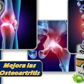 Ayuda a mejorar laOsteoartritis  #YoSoyNfn #NaturalForcesNutriproducts #salud #vitalidad #Harpagofito #NFNColombia #NFNVenezuela #NFNMiami #NFNPanama