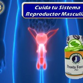 Este es un producto 100% natural compuesto por el aceite de semilla de calabaza, sinérgicamente combinada conSawPalmettoy otras hierbas para proporcionar un excelente funcionamiento del sistema reproductivo masculino.  #YoSoyNfn#NaturalForcesNutriproducts#ProstaForces  #NFNPanama 🇵🇦 #NFNMiami 🇺🇸 #NFNVenezuela 🇻🇪 #NFNColombia 🇨🇴
