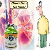 Diurético natural, no baja el potasio, elimina el exceso de líquido corporal, edemas,  inflamaciones por líquidos, celulitis y antiséptico  #YoSoyNFN#NaturalForcesNutriproducts#WaterLight  #NFNPanama 🇵🇦 #NFNMiami 🇺🇸 #NFNVenezuela 🇻🇪 #NFNColombia 🇨🇴