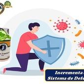 InmunoTransfactorPlus: Incrementa el sistema de defensas, mantiene el sistema inmunológico en óptimas condiciones con dosis mínima, tiene una respuesta en menos de 4 horas, ayuda a controlar alergias y evita enfermedades autoinmunes.  #YoSoyNfn #NaturalForcesNutriproducts #salud #vitalidad #InmunoTransfactorPlus  #NFNPanama 🇵🇦 #NFNMiami 🇺🇸 #NFNVenezuela 🇻🇪 #NFNColombia 🇨🇴