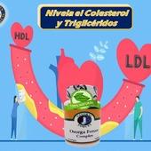 Este producto contiene los aminoácidos esenciales y losnutrientes que elimina los niveles altos de #Colesterol, #Trigliceridos con #Omega3,6,9 100% Natural todo en una sola cápsula  #YoSoyNfn #NaturalForcesNutriproducts #OmegaForcesComplex  #NFNPanama 🇵🇦 #NFNMiami 🇺🇸 #NFNVenezuela 🇻🇪 #NFNColombia 🇨🇴