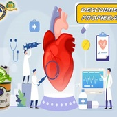 Descubre🧐 las propiedades que traeel Resveratrol para ti:  🍃 Mejora la frecuencia cardiaca   🍃 Oxigena la células 🌬️  🍃 Contribuye al tratamiento contra la obesidad ⚖️  #YoSoyNfn #NaturalForcesNutriproducts #ResveratrolPlus  #NFNPanama 🇵🇦 #NFNMiami 🇺🇸 #NFNVenezuela 🇻🇪 #NFNColombia 🇨🇴