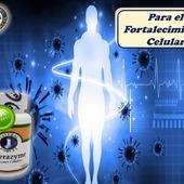 Therazymeestimula el fortalecimiento de las células permitiendo su durabilidad dentro de nuestro organismo, regulando el sistemainmunológico. Producto 100% Natural aprobado por la FDA #YoSoyNfn#NaturalForcesNutriproducts#Therazyme  #NFNColombia#NFNVenezuela#NFNMiami#NFNPanama