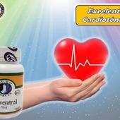 Excelente Cardiotónico, poseen propiedades estimulantes sobre el corazón, mejorando la frecuencia cardiaca. Se utilizan para tratar lainsuficiencia cardiacacongestiva y las alteraciones del ritmo cardiaco.  #YoSoyNfn#NaturalForcesNutriproducts#ResveratrolPlus  #NFNPanama 🇵🇦 #NFNMiami🇺🇸 #NFNVenezuela🇻🇪 #NFNColombia🇨🇴