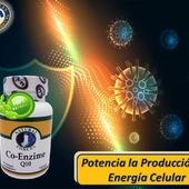 La coenzima Q10, también conocida comoubiquinona, ayuda a la mitocondria para potenciar la producción de energía en las células; en el proceso complejo de transformar los nutrientes en energía que el cuerpo necesita.  #YoSoyNfn #NaturalForcesNutriproducts #Salud #Vitalidad #CoEnzimaQ10 #NFNColombia #NFNVenezuela #NFNMiami #NFNPanama